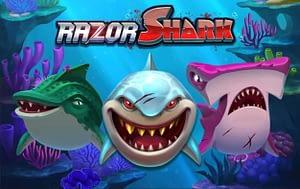 Razor shark(レーザーシャーク)